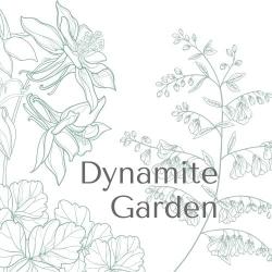 Dynamite Garden
